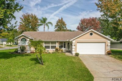 Ormond Beach Single Family Home For Sale: 21 Parkview Ln