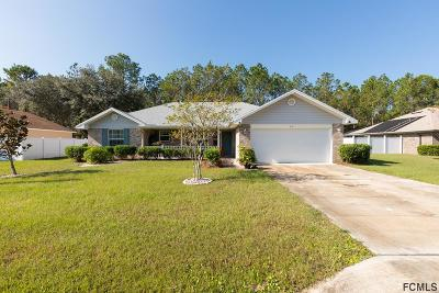 Palm Coast Single Family Home For Sale: 97 Karas Trail