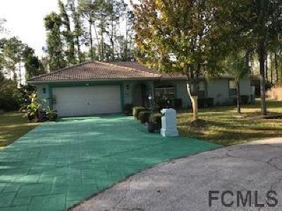 Palm Coast Single Family Home For Sale: 7 Ryecarr Place