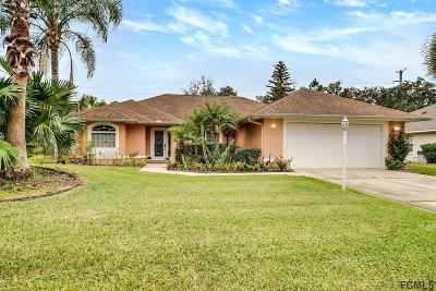 Palm Coast Single Family Home For Sale: 44 Foxhall Ln