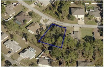 Pine Grove Residential Lots & Land For Sale: 46 Pine Brook Dr