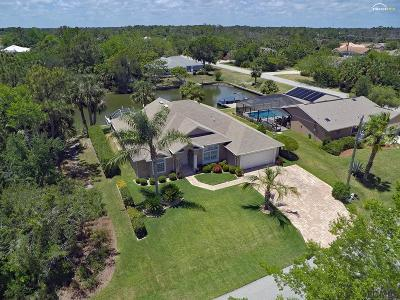 Palm Harbor Single Family Home For Sale: 6 Columbus Court