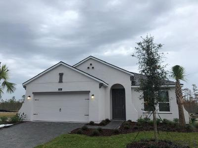 Daytona Beach Single Family Home For Sale: 156 Azure Mist Way