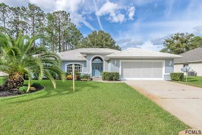 Palm Coast Single Family Home For Sale: 59 Bassett Ln
