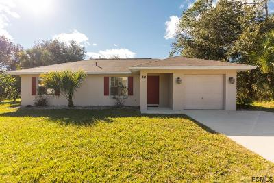 Palm Coast Single Family Home For Sale: 20 Sea Flower Path