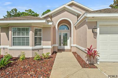 Palm Coast Single Family Home For Sale: 9 Cochise Court