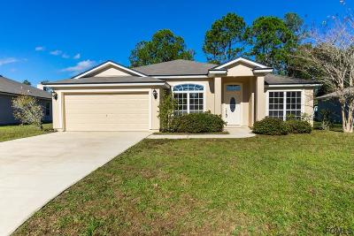 Palm Coast Single Family Home For Sale: 30 Riviera Estates Drive