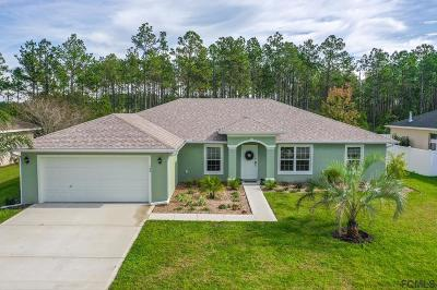 Palm Coast Single Family Home For Sale: 104 S Coopers Hawk Way