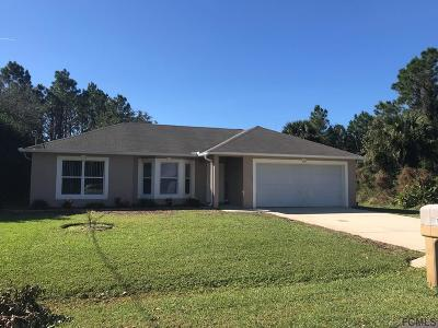 Matanzas Woods Single Family Home For Sale: 134 Lindsay Dr