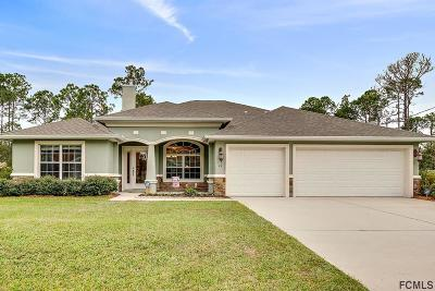 Palm Coast Single Family Home For Sale: 41 Riverview Drive