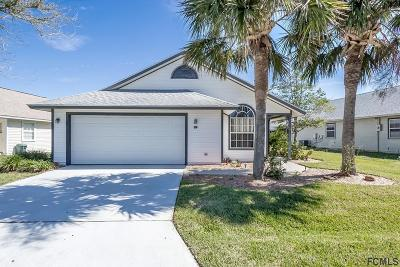 Palm Coast Single Family Home For Sale: 39 Andover Dr