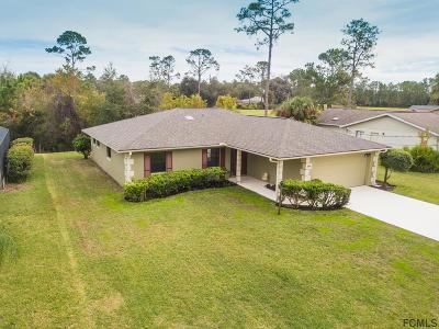 Palm Coast Single Family Home For Sale: 158 Westgrill Dr