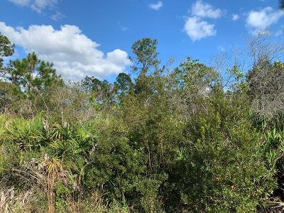 Seminole Woods Residential Lots & Land For Sale: 8 Serenade Place