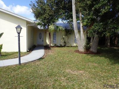 Palm Coast Single Family Home For Sale: 19 Cedardale Ct
