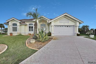 Palm Coast Single Family Home For Sale: 20 Crazy Horse Court