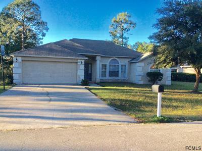 Palm Coast Single Family Home For Sale: 28 White Star Drive