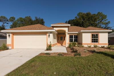 Palm Coast Single Family Home For Sale: 23 Pineash Ln