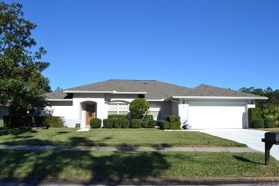 Palm Coast Single Family Home For Sale: 2 Cedar Point Dr