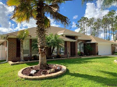 Palm Coast Single Family Home For Sale: 6 Riverview Place