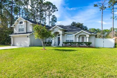 Palm Coast Single Family Home For Sale: 27 Brewster Lane