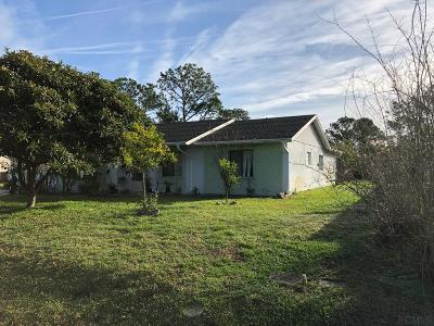 Palm Coast Single Family Home For Sale: 82 Bud Hollow Drive