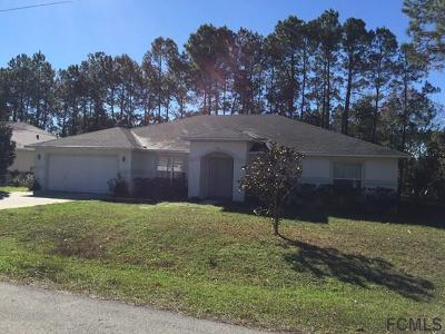 Palm Coast Single Family Home For Sale: 75 Panorama Drive