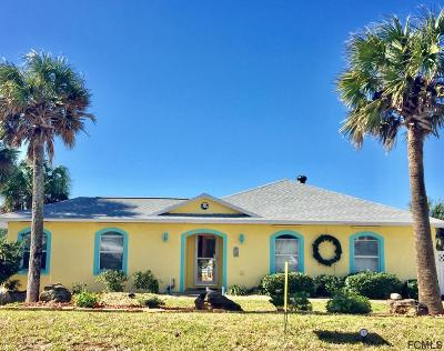 Flagler Beach Single Family Home For Sale: 3561 S Central Ave