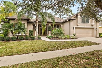Palm Coast Single Family Home For Sale: 76 Osprey Cir