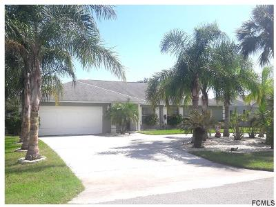 Palm Coast Single Family Home For Sale: 25 Clinton Ct S