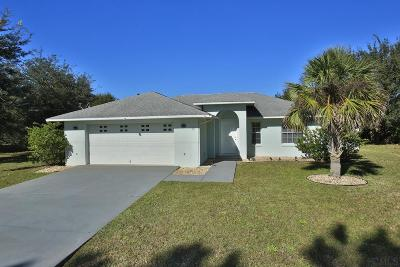 Palm Coast Single Family Home For Sale: 68 Buttermill Dr
