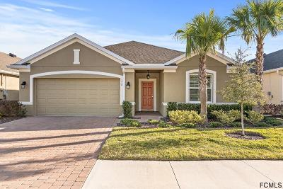 Palm Coast Single Family Home For Sale: 128 Park Place Circle