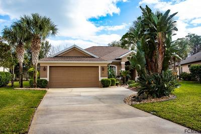 Palm Coast Single Family Home For Sale: 64 Southlake Drive
