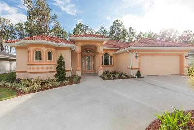 Palm Coast Single Family Home For Sale: 24 Eastland Lane