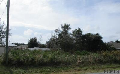 Matanzas Woods Residential Lots & Land For Sale: 20 Louisburg Ln