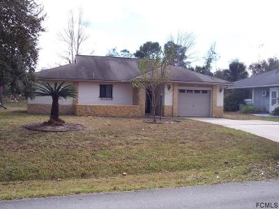Palm Coast Single Family Home For Sale: 113 Blare Castle Drive