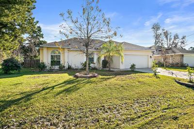 Palm Coast Single Family Home For Sale: 38 Woodbury Drive