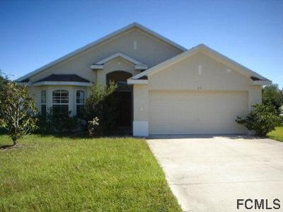 Palm Coast Single Family Home For Sale: 99 Luther Dr