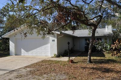 Flagler Beach Single Family Home For Sale: 2156 S Flagler Ave