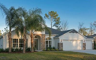 Palm Coast Single Family Home For Sale: 24 East Diamond Drive