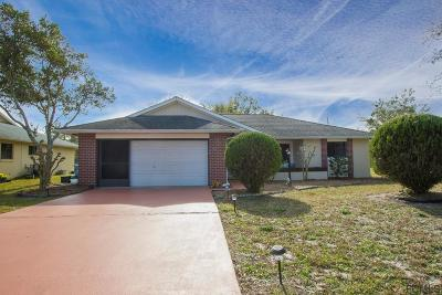 Palm Coast Single Family Home For Sale: 13 Blairton Court