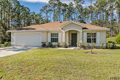 Palm Coast Single Family Home For Sale: 60 Lake Success Dr