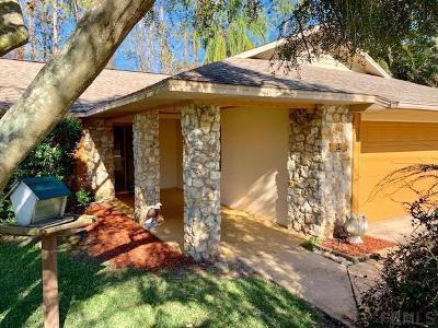 Palm Coast Single Family Home For Sale: 89 Wellwater Drive