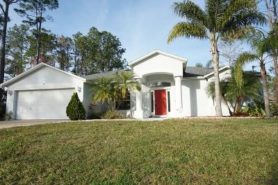 Palm Coast Single Family Home For Sale: 28 Red Birch Lane
