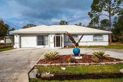 Palm Coast Single Family Home For Sale: 118 Prince Eric Ln