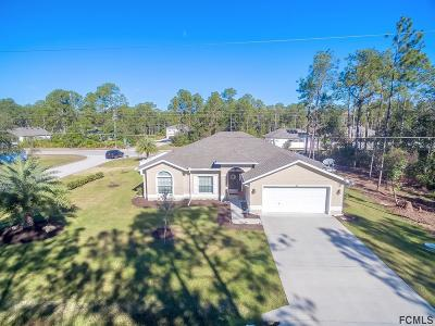 Palm Coast Single Family Home For Sale: 1 Kathryn Pl