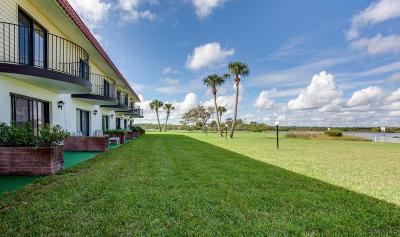 Flagler Beach Condo/Townhouse For Sale: 68 S Ocean Palm Villas S #68