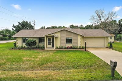 Palm Coast Single Family Home For Sale: 28 Century Lane