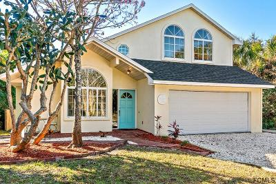 Flagler Beach Single Family Home For Sale: 1920 Palmetto Ave S