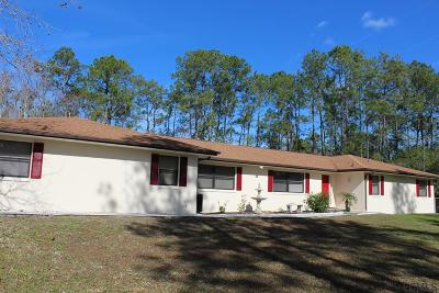 Ormond Beach Single Family Home For Sale: 3626 Conifer Ln