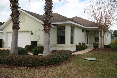 Palm Coast Single Family Home For Sale: 119 Raintree Cir